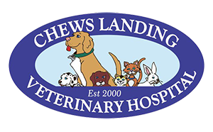 Chews Landing Veterinary Hospital